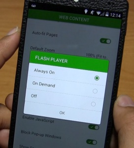 Instal adobe flash flayer android