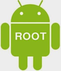95f45-root